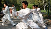 Taijiquan / T'ai chi ch'uan
