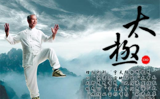 Post image for Taijiquan / T'ai chi ch'uan