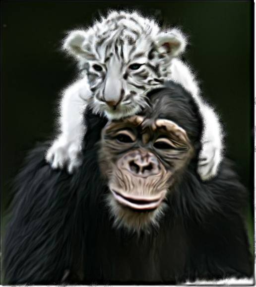 Implikasi Shio Monyet